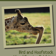 AAZK Bird/Hoofstock Mixed Species Dedicated Issue