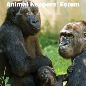 Gorilla 2014 AKF cover
